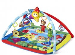 Baby Einstein Activity Gym and Play Mat