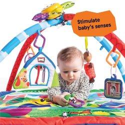 Baby Einstein Activity Gym and Play Mat